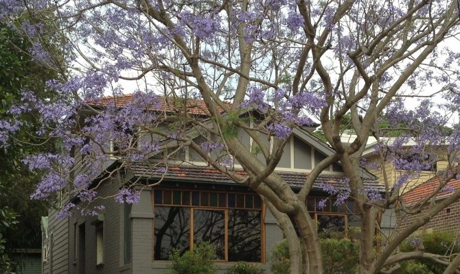 House close to Sydney Australia for home exchange